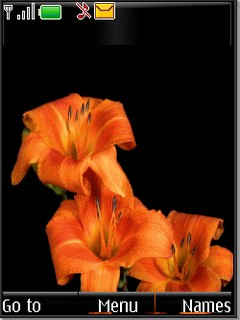 Animated flowers s40v3 theme by shadow_20