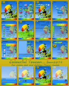 Colourful Toucan by sam